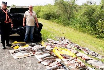 Decomiso de pescados pequeños