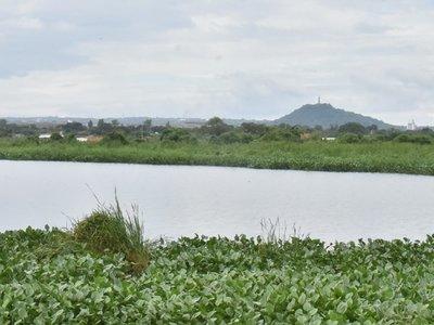 Bellas lagunas  se pierden en sitios olvidados y contaminados en capital