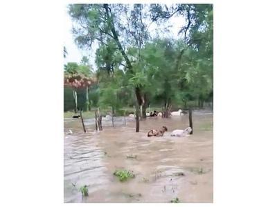 Poblados del Bajo Chaco están inundados y aislados