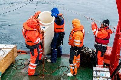 Estudian en la Antártida el ciclo del carbono, clave contra cambio climático