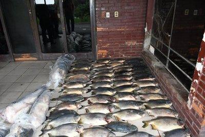 Decomisan productos pesqueros en zona Vista Alegre