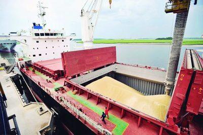 Exportan más de 1,6 millones de toneladas de soja