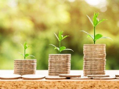 Moneda virtual verde se expande a América Latina como ecoins