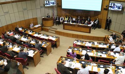 """Declaración del Senado como provida fue """"motivada por el oportunismo"""""""