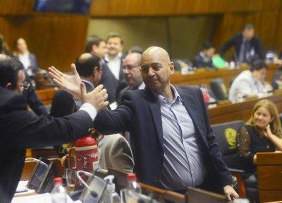Pedro Alliana regresó a la Cámara de Diputados