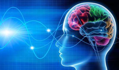 Ondas cerebrales se sincronizan cuando personas hablan lenguas extranjeras