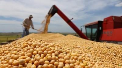 Argentina cosechará 55: de toneladas de soja