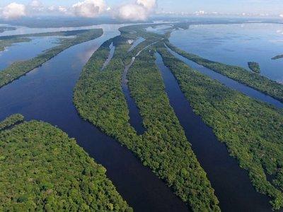 Hace 10.000 años que en Amazonia viven comunidades estables