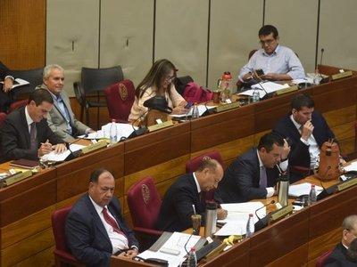 Senado posterga el tratamiento de votos y escrutinio electrónico