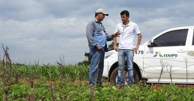 Modernización de la agricultura familiar eleva ingresos de pequeños productores