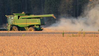 """""""Una pérdida de 30% a nivel país, son casi 3 millones de toneladas de soja, que se traduce en dejar de percibir unos US$ 1.000 millones"""""""