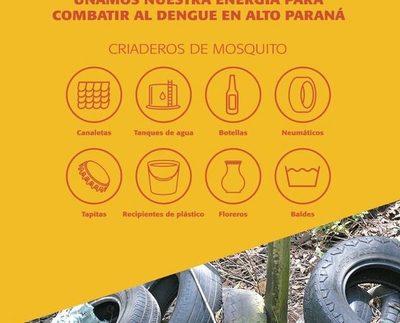 Confirman dos muertes por dengue y Alto Paraná supera  los 1.500 casos