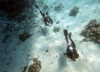 El turismo amenaza corales de aguas turquesas del Rojo