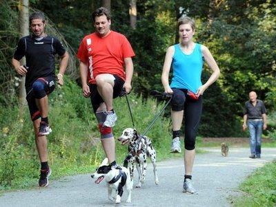 Vivir con un perro es más saludable, revela estudio