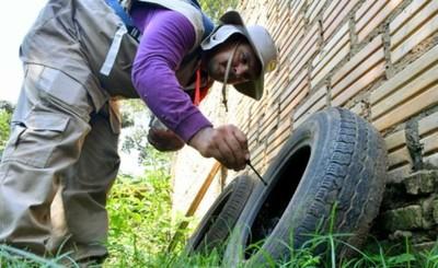 Campaña contra el dengue ya rastrilló más de 8.000 predios