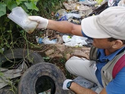 Senepa continúa lucha contra el Aedes aegypti