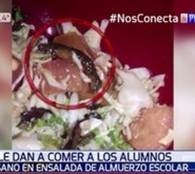 Verifique la comida de sus hijos: Hallan gusanos en almuerzo escolar