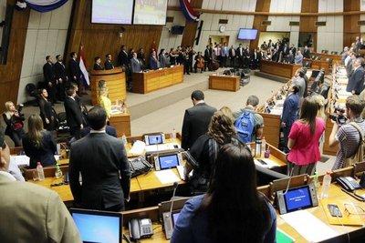 """Diputados aprobó con modificaciones el proyecto de Ley """"Ñane Energía"""""""