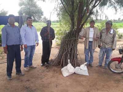 Asisten a productores de comunidades indígenas en el Chaco