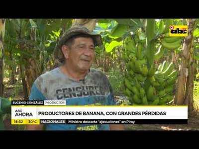 Productores de banana con grandes pérdidas