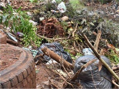 Drama de la poda: Restos de ramas fomentan  vertederos clandestinos