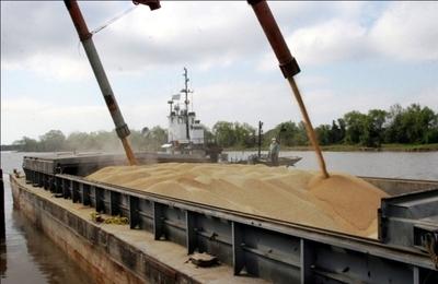 La menor producción de soja sumada a la caída del precio explican la baja que se registro en las exportaciones frente a 2018