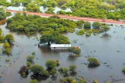 Las importantes lluvias afectan la producción ganadera y agrícola