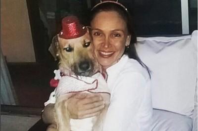 """El perro Chiruzo y el saludo a su """"mamá humana"""""""