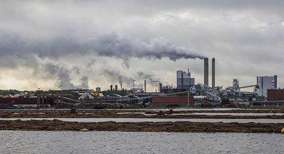 Uruguay avanza negociación para instalar tercera planta de celulosa en medio de protestas