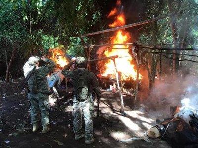 Amambay: Destruyen casi 700 kilos de marihuana