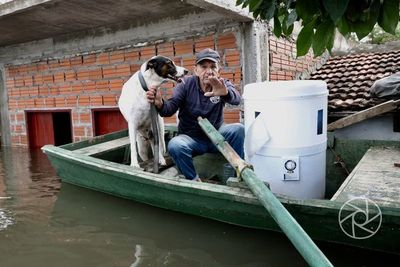 Brindan asistencia a mascotas desplazadas por las aguas