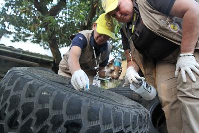 Se reportan cerca de 4.000 casos de dengue, por lo que instan a eliminar criaderos