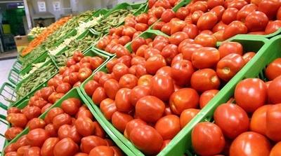 HOY / Precio del tomate está por las nubes