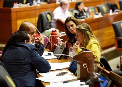 Cámara Baja define entre voto electrónico o papeleta