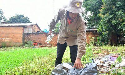 """""""Pará-na los criaderos"""": trabajos de rastrillaje y fumigación previstos para hoy martes"""