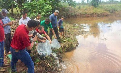 Habilitan 15 estanques con 1.500 peces juveniles en Puerto Indio