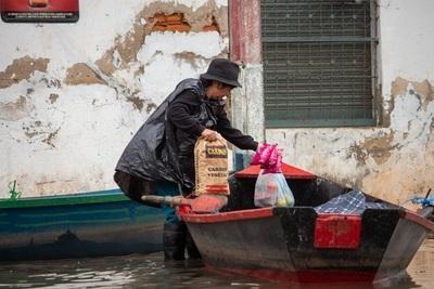 10 impactantes imágenes de la vida bajo el agua en Asunción