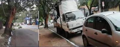 HOY / Camión choca contra rama de árbol y termina contra una muralla