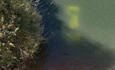 Un rescatado y un desaparecido en accidente sobre puente