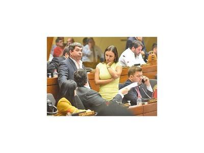 Promocionada unidad de colorados en la Cámara de Diputados  no funciona