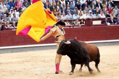 """Las corridas, """"ritual"""" para unos y """"arte de matar"""" para otros"""