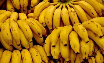 Por Ley incluirán banana en la alimentación escolar