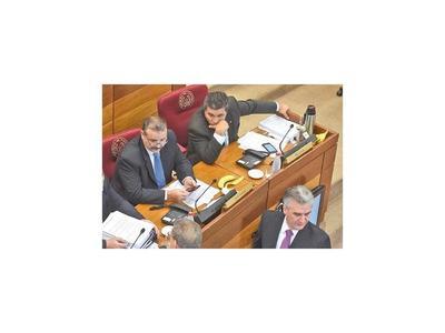 Lanzoni espera que la ANR ceda presidencia del Senado