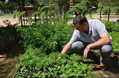 Gobierno Nacional apunta a la reforestación con mano de obra penitenciaria