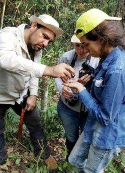 Banco de conservación genética forestal