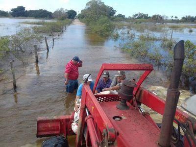 Ganaderos paraguayos en alerta ante impacto de inundaciones en hato nacional