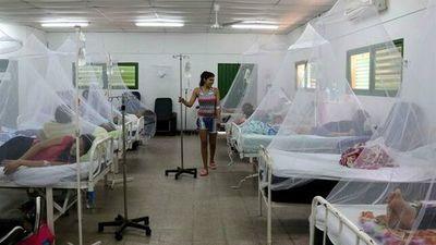 Aumentan casos de dengue en nuestro país