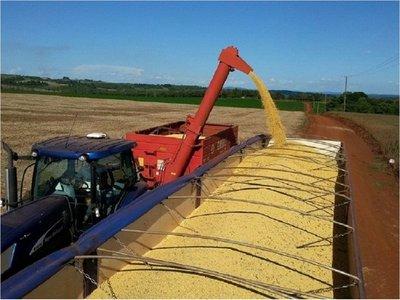 Sector privado de soja exige a Gobierno que se abra a China