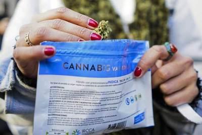 La experiencia de Uruguay con la marihuana