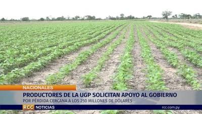 Productores proponen reestructuración de deuda para afrontar crisis de la soja
